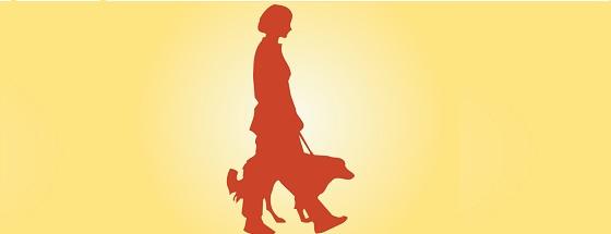 Assicurazione animali domestici una polizza per tutelare - Assicurazione contraente e proprietario diversi ...